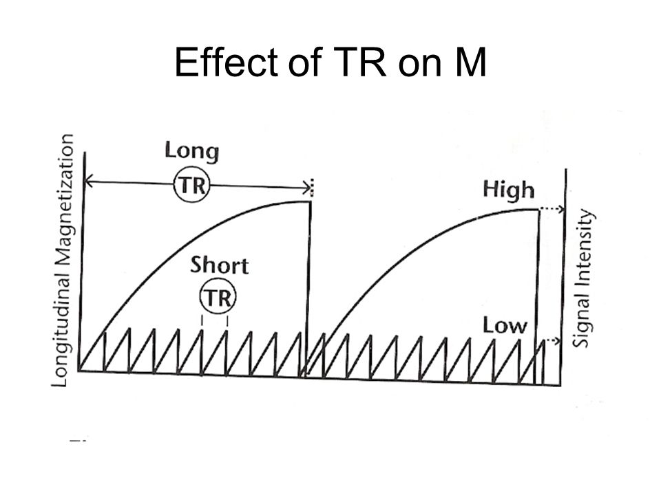 Effect of TR on M