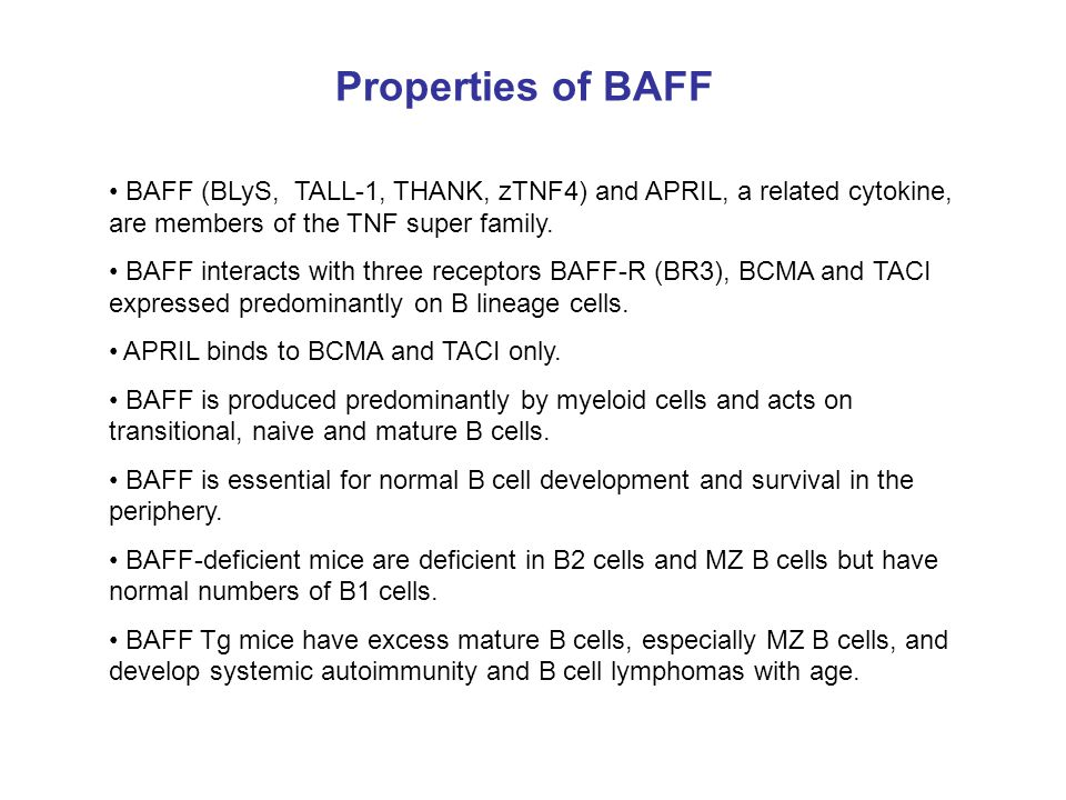 Properties of BAFF BAFF (BLyS, TALL-1, THANK, zTNF4) and APRIL, a related cytokine, are members of the TNF super family.