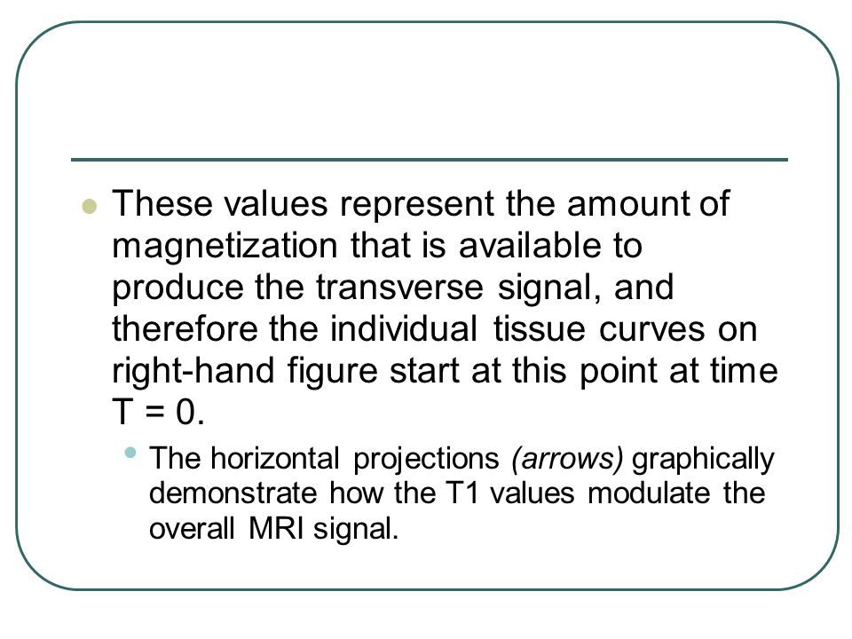 These values represent the amount of magnetization that is available to produce the transverse signal, and therefore the individual tissue curves on right-hand figure start at this point at time T = 0.