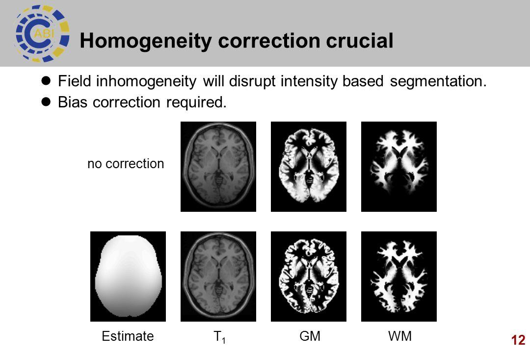 Homogeneity correction crucial