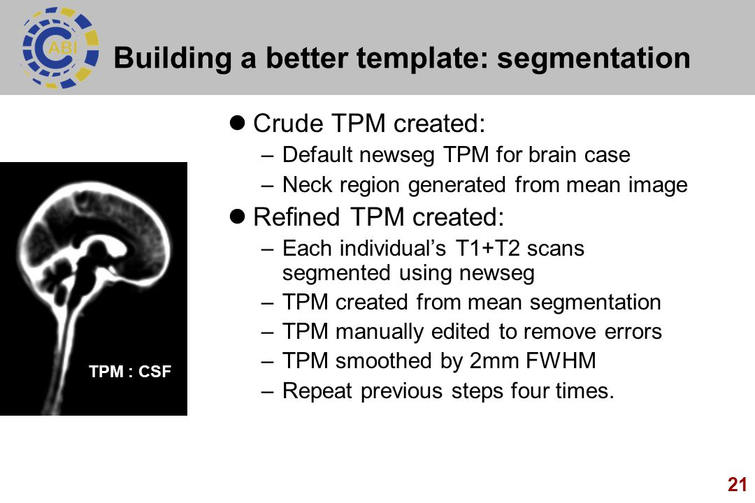 Building a better template: segmentation