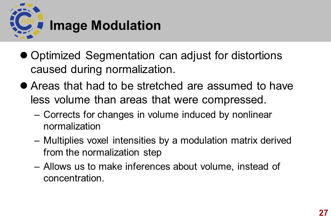 Image Modulation Optimized Segmentation can adjust for distortions caused during normalization.