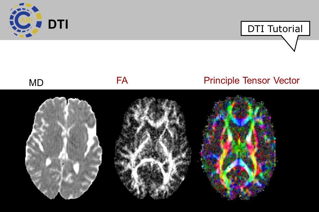 DTI DTI Tutorial FA Principle Tensor Vector MD