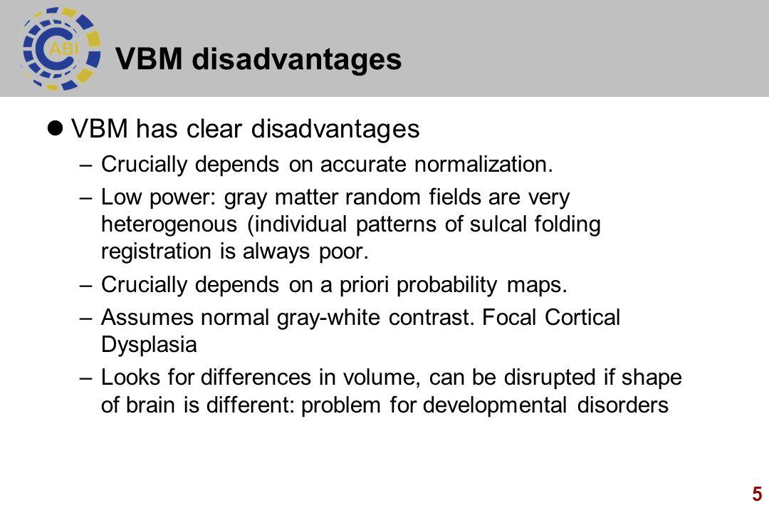 VBM disadvantages VBM has clear disadvantages