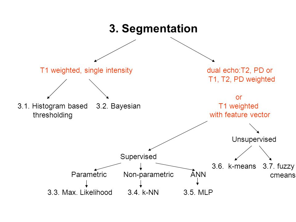 3. Segmentation T1 weighted, single intensity dual echo:T2, PD or