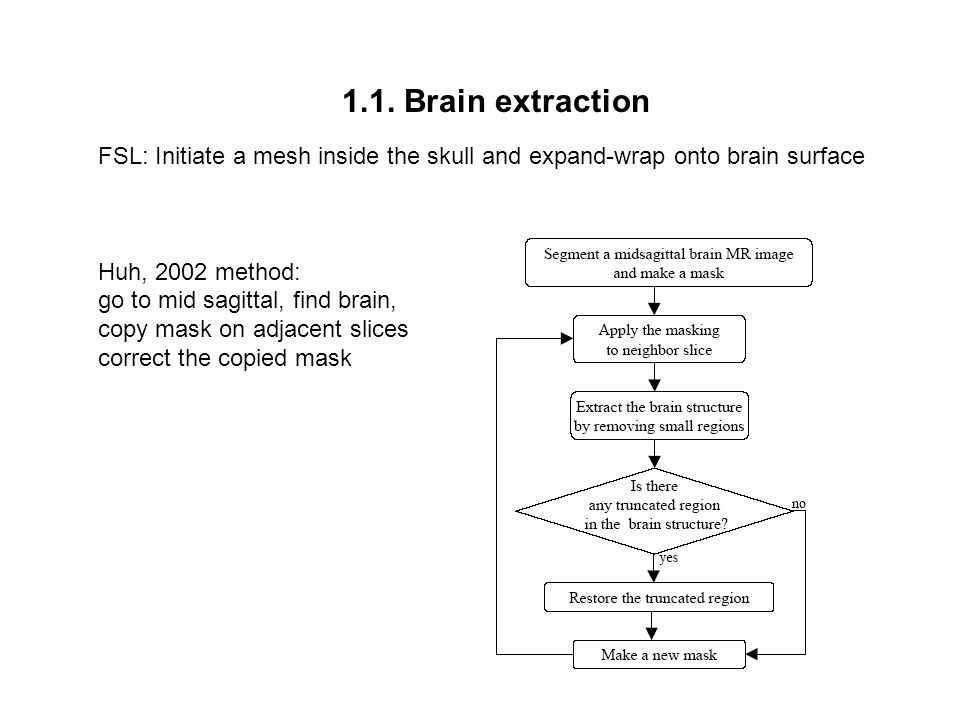 1.1. Brain extraction FSL: Initiate a mesh inside the skull and expand-wrap onto brain surface. Huh, 2002 method:
