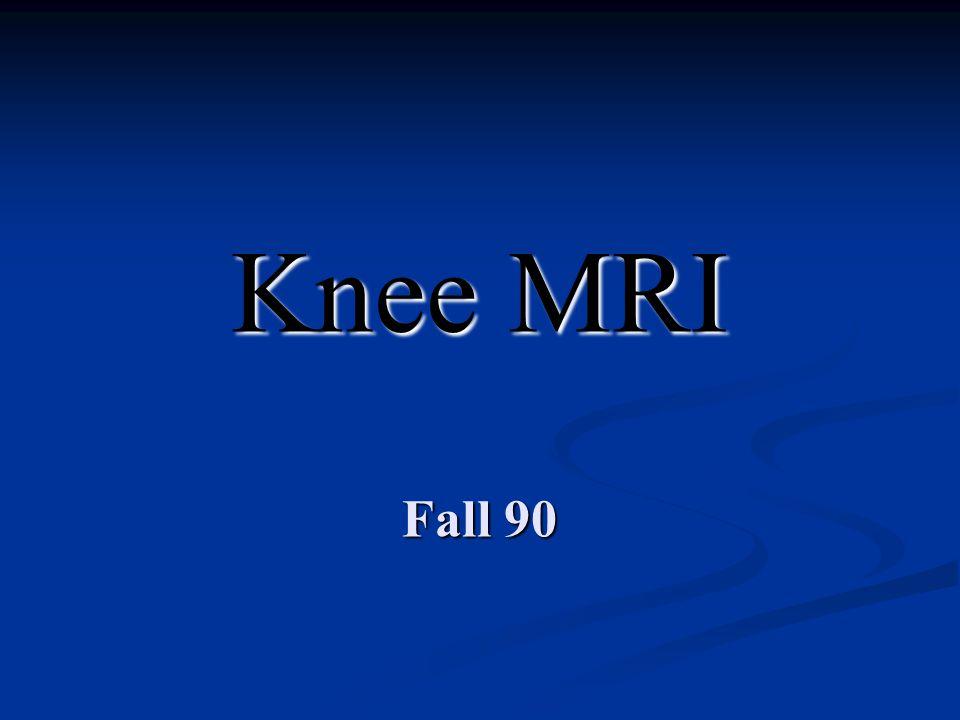 Knee MRI Fall 90