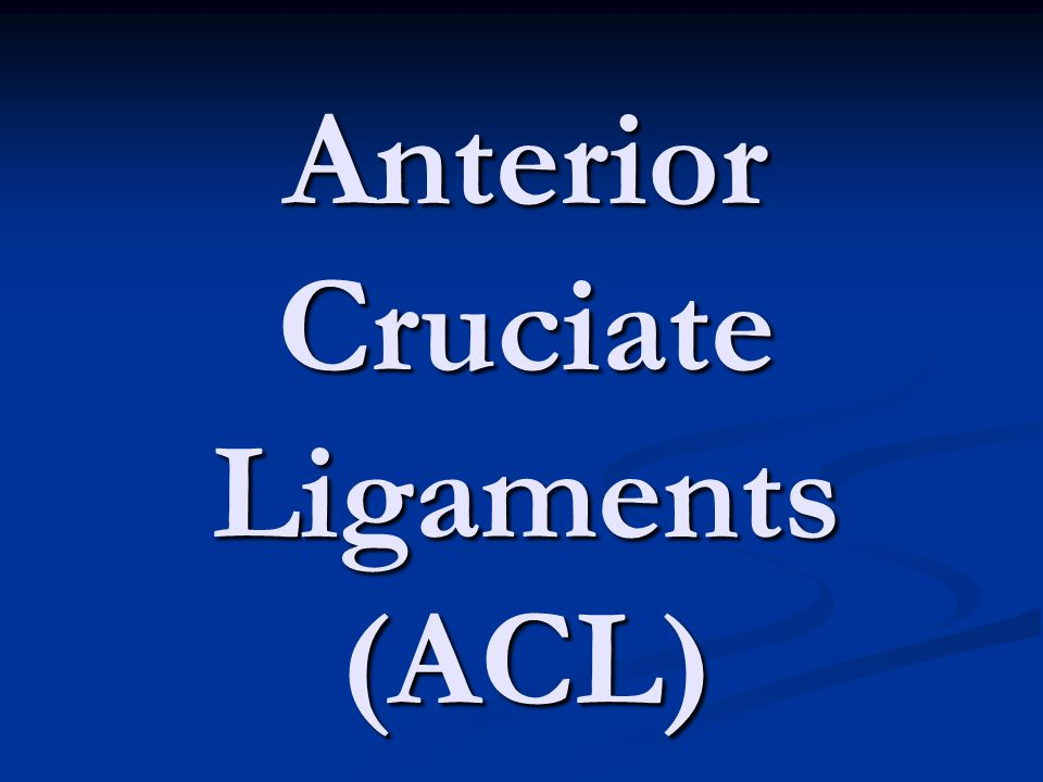 Anterior Cruciate Ligaments (ACL)