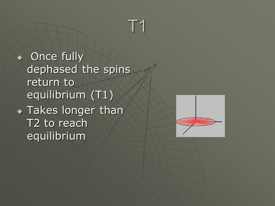 T1 Once fully dephased the spins return to equilibrium (T1)