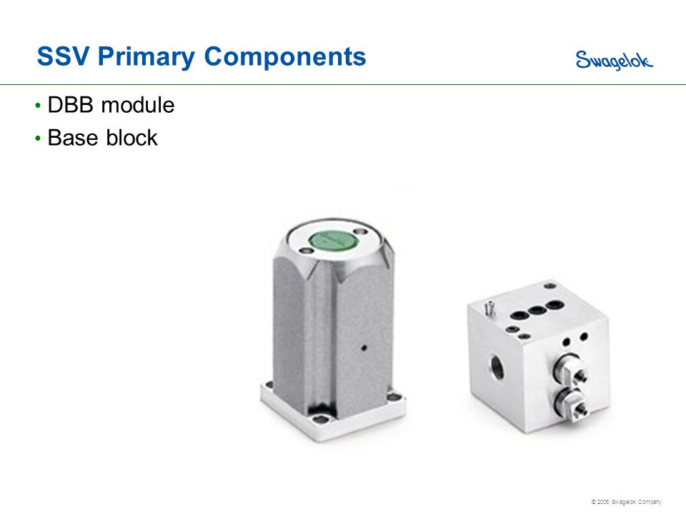SSV Primary Components