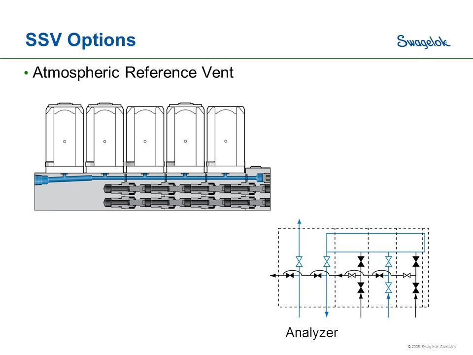 SSV Options Atmospheric Reference Vent Analyzer