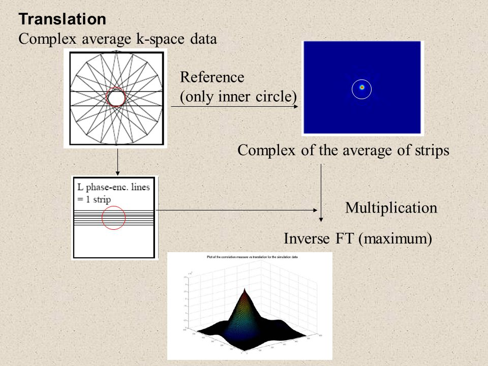 Translation Complex average k-space data. Reference. (only inner circle) Complex of the average of strips.