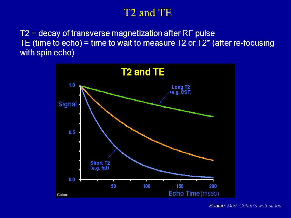 T2 and TE T2 = decay of transverse magnetization after RF pulse