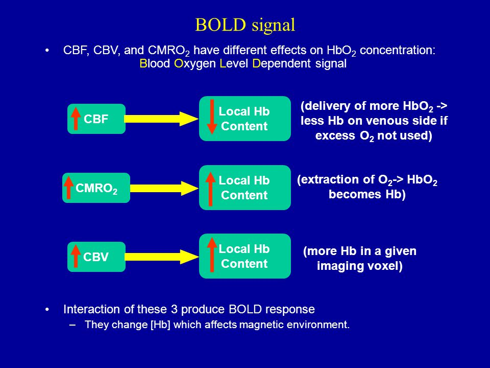 BOLD signal CBF, CBV, and CMRO2 have different effects on HbO2 concentration: Interaction of these 3 produce BOLD response.