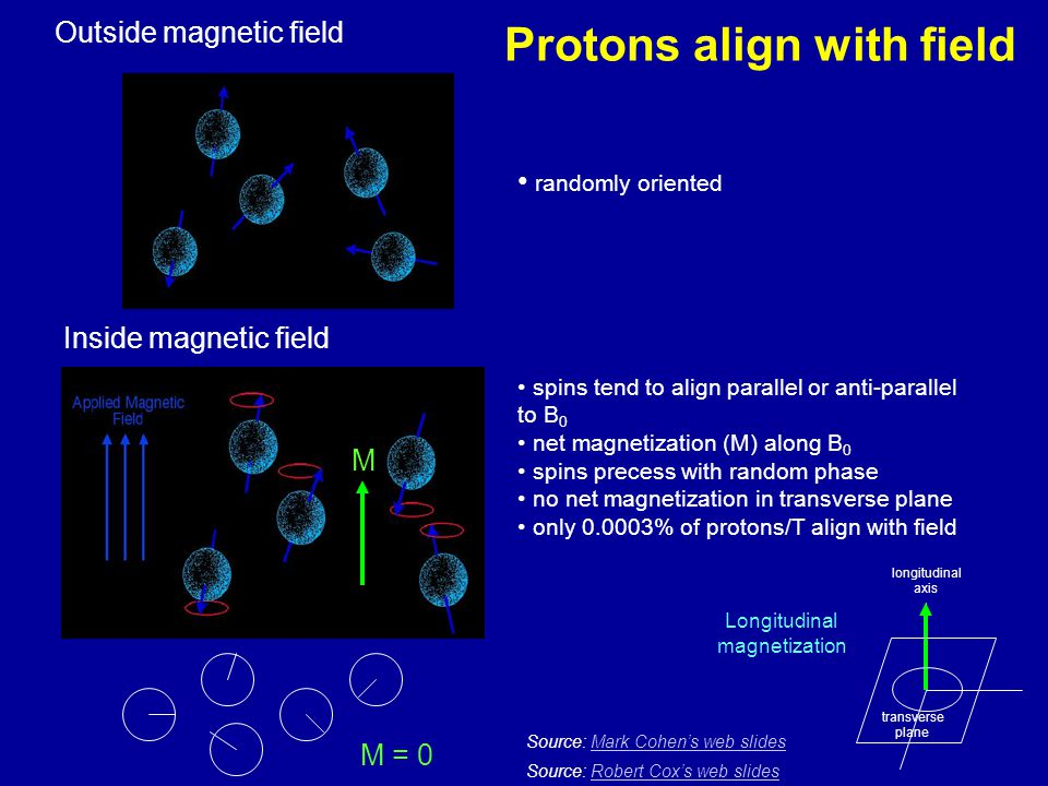 Protons align with field