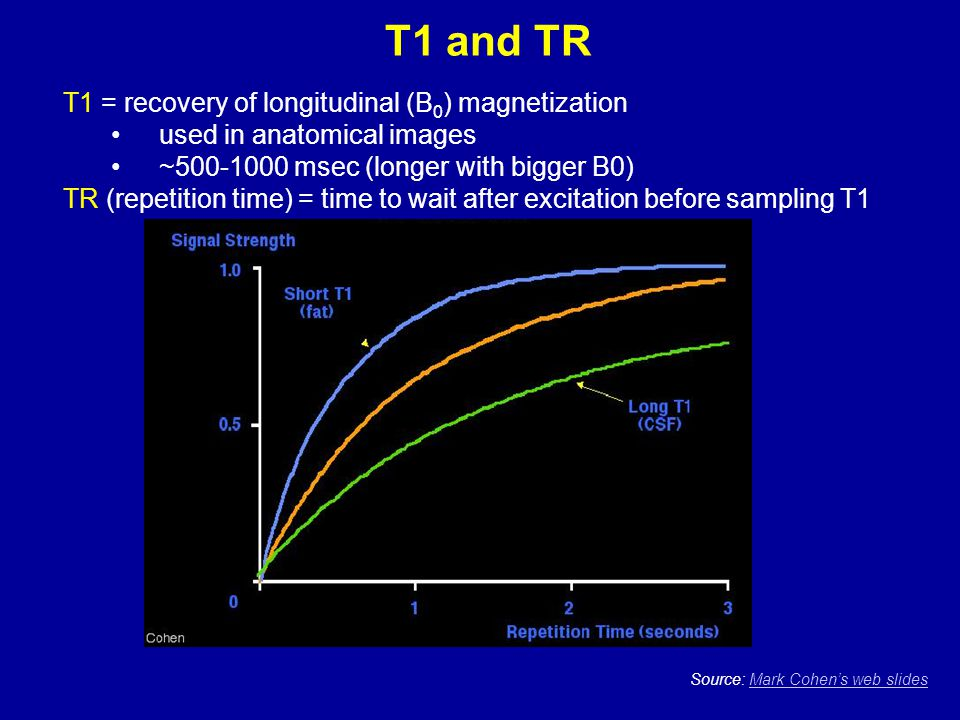 T1 and TR T1 = recovery of longitudinal (B0) magnetization