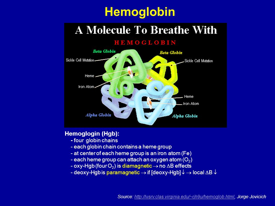 Hemoglobin Hemoglogin (Hgb): - four globin chains