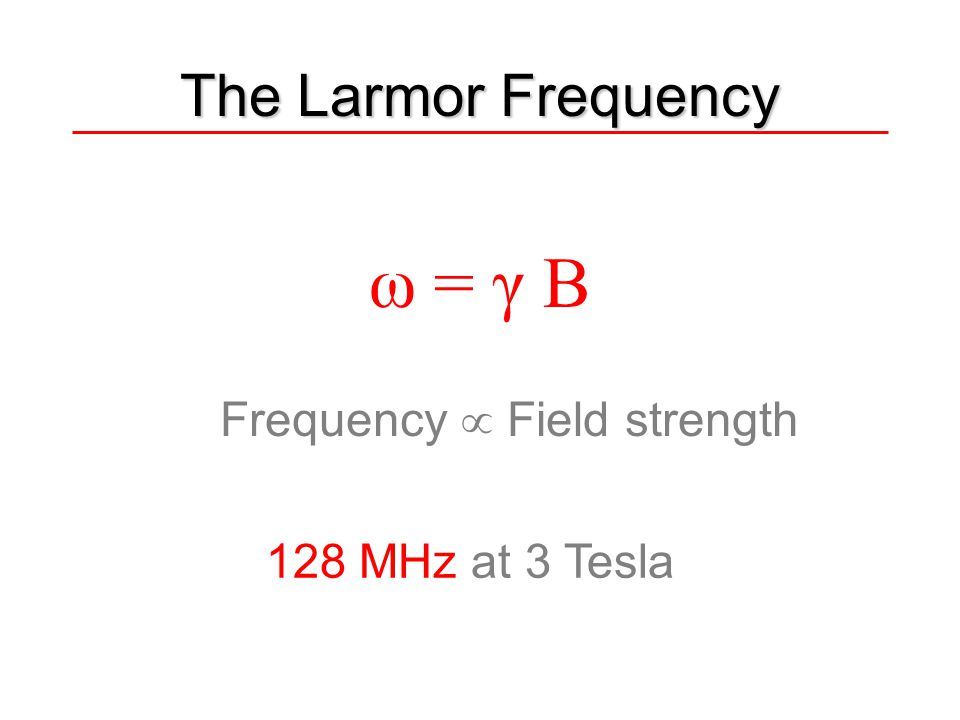 ω = γ B The Larmor Frequency Frequency  Field strength