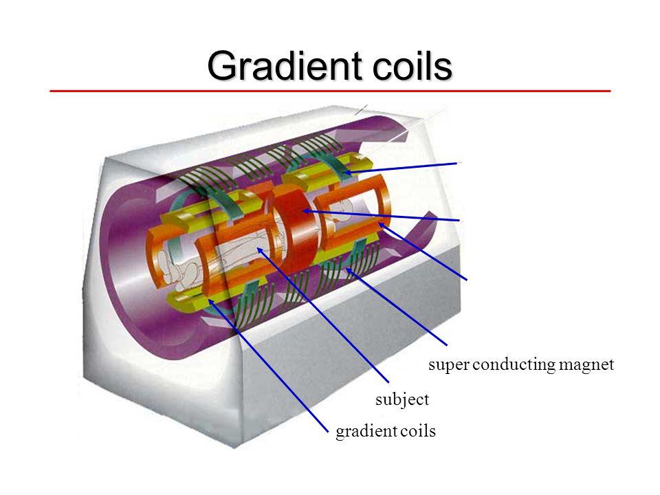 Gradient coils z gradient coil r.f. transmit/receive x gradient coil