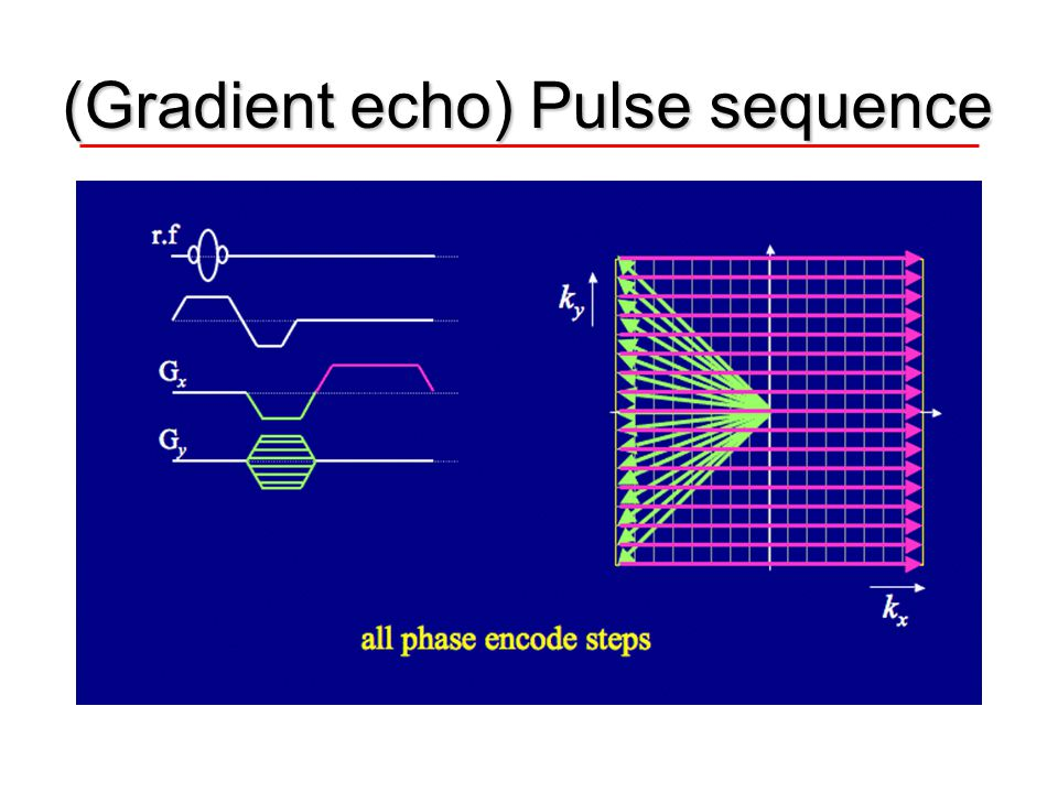 (Gradient echo) Pulse sequence