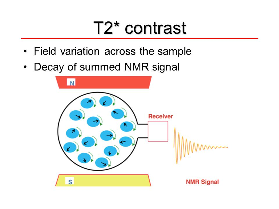 T2* contrast Field variation across the sample