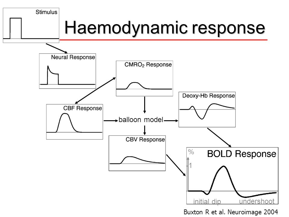 Haemodynamic response