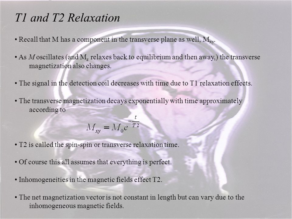 T1 and T2 Relaxation Recall that M has a component in the transverse plane as well, Mxy.