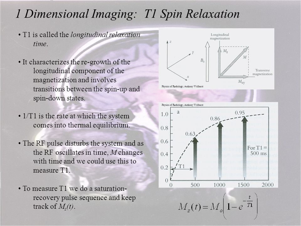 1 Dimensional Imaging: T1 Spin Relaxation