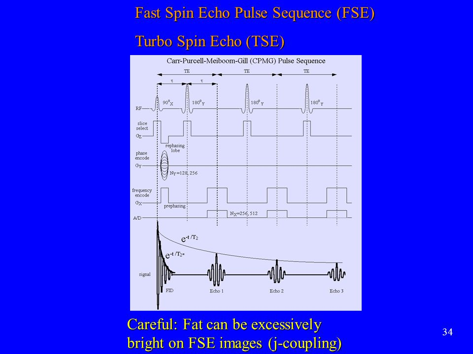 Fast Spin Echo Pulse Sequence (FSE) Turbo Spin Echo (TSE)