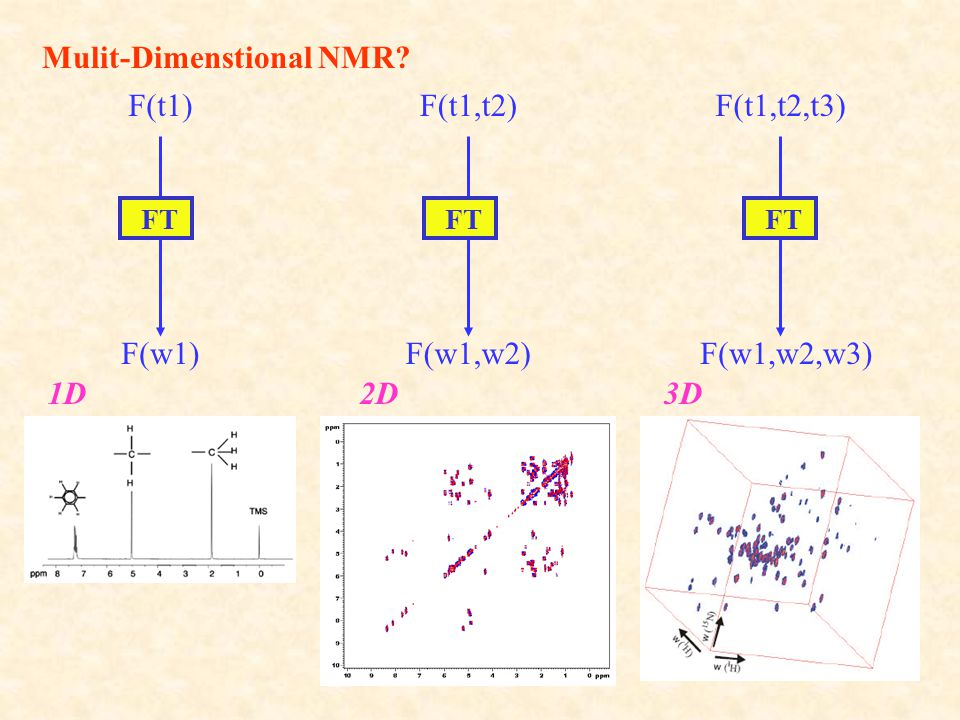 Mulit-Dimenstional NMR
