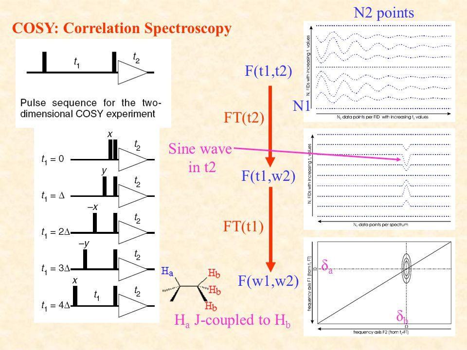 COSY: Correlation Spectroscopy