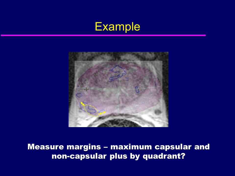 Measure margins – maximum capsular and non-capsular plus by quadrant