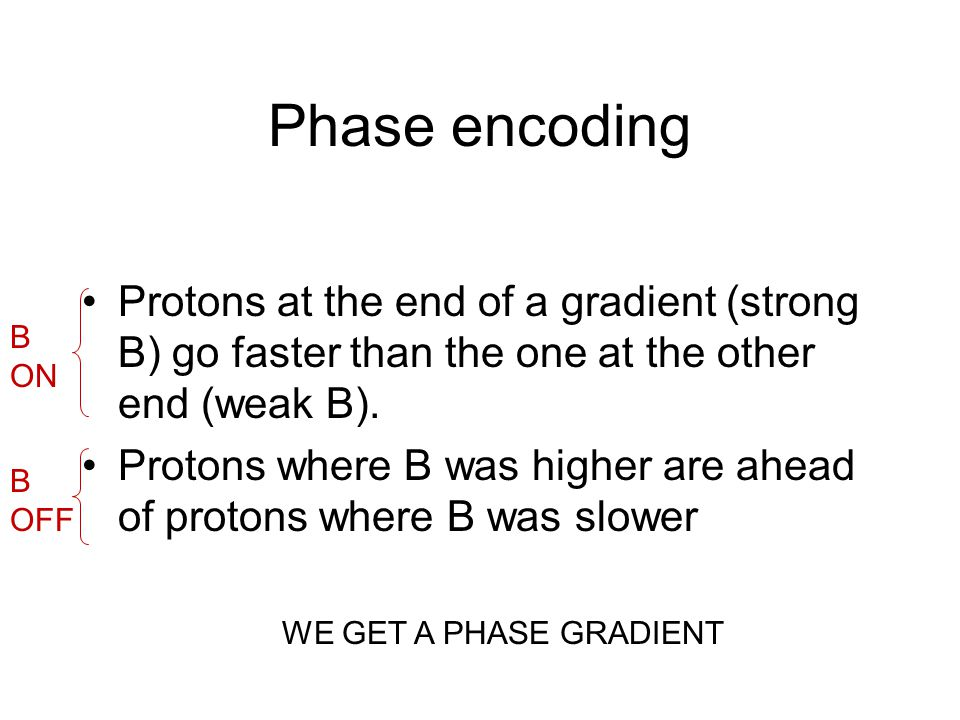 Phase encoding Protons at the end of a gradient (strong B) go faster than the one at the other end (weak B).