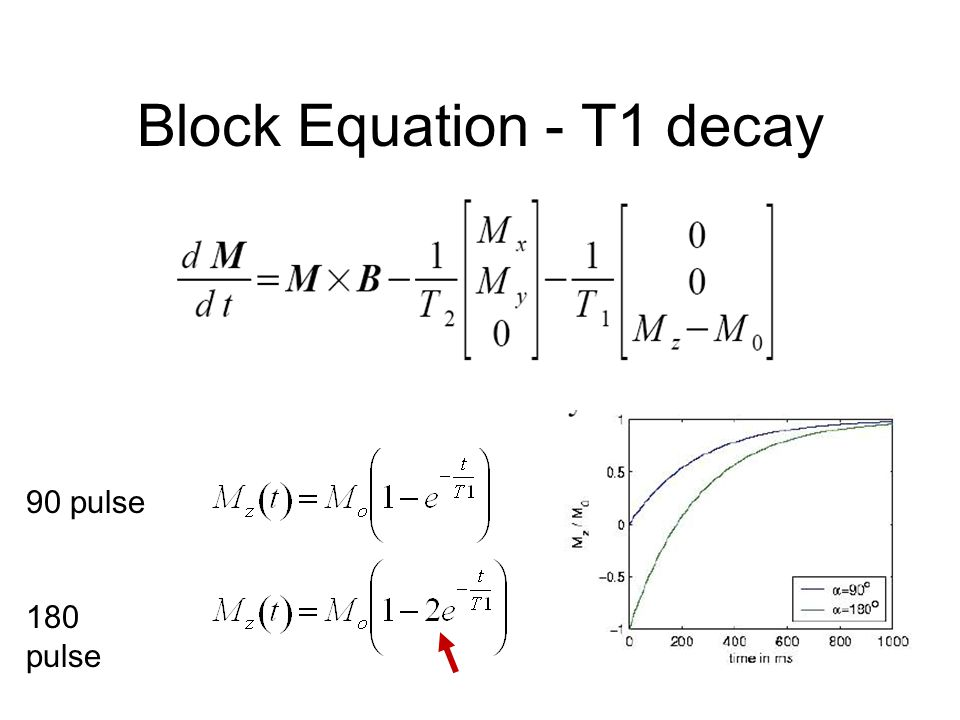 Block Equation - T1 decay