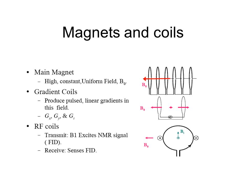 Magnets and coils