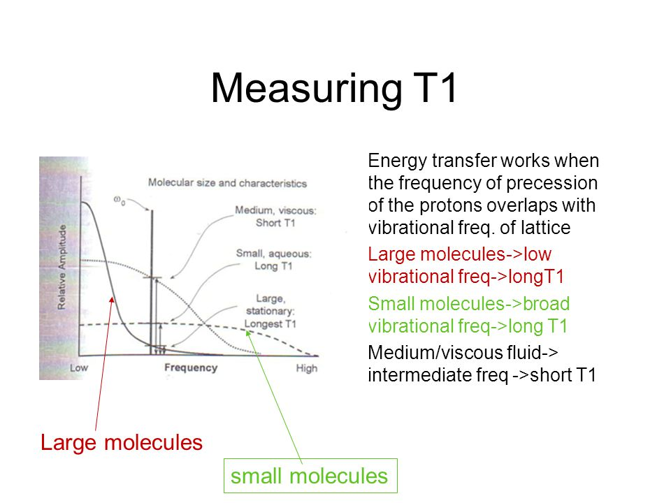 Measuring T1 Large molecules small molecules