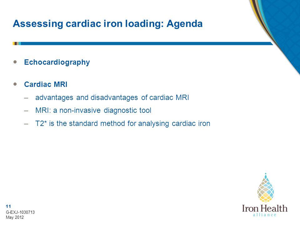 Assessing cardiac iron loading: Agenda