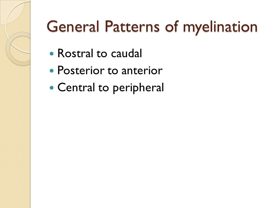 General Patterns of myelination