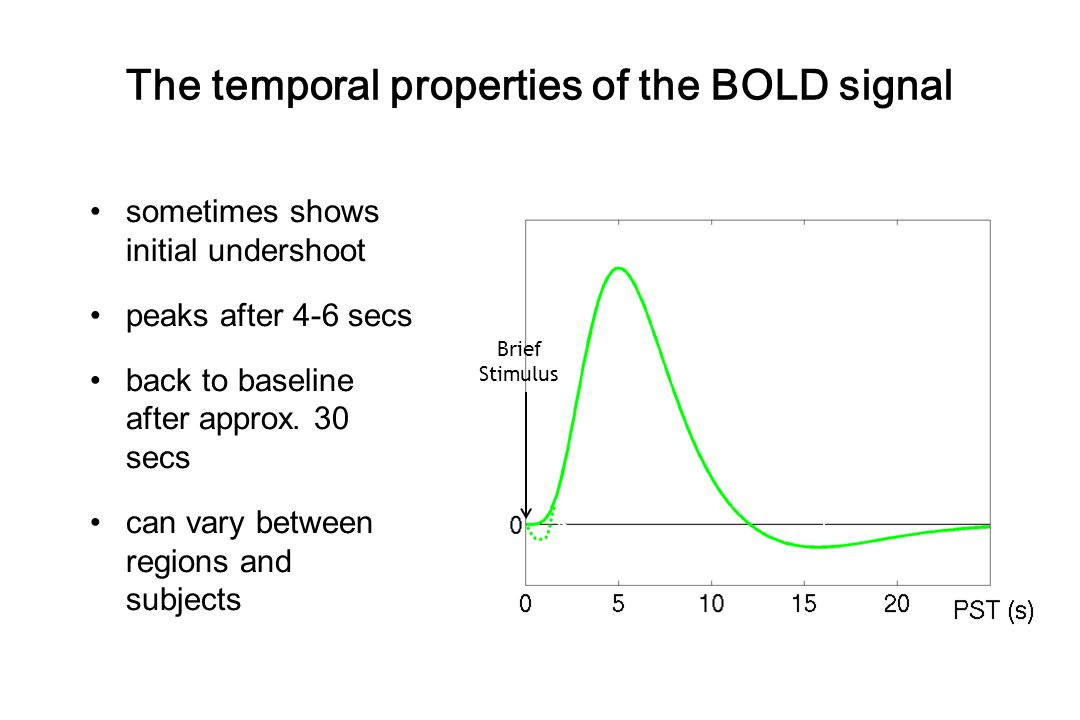The temporal properties of the BOLD signal