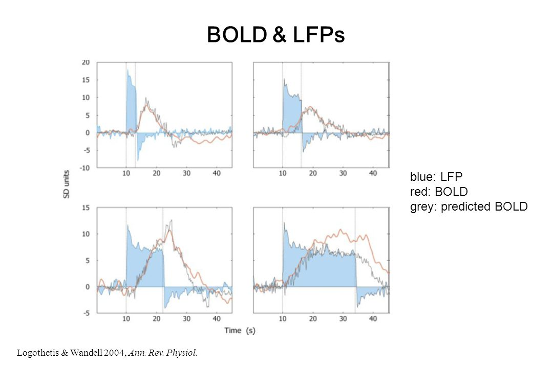 BOLD & LFPs blue: LFP red: BOLD grey: predicted BOLD