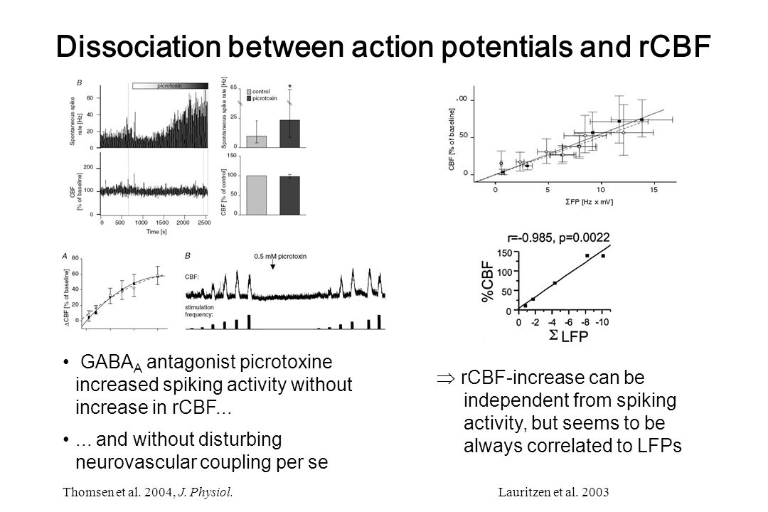 Dissociation between action potentials and rCBF
