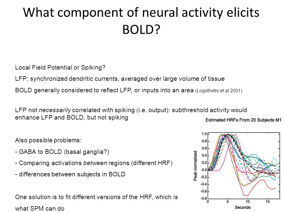 What component of neural activity elicits BOLD
