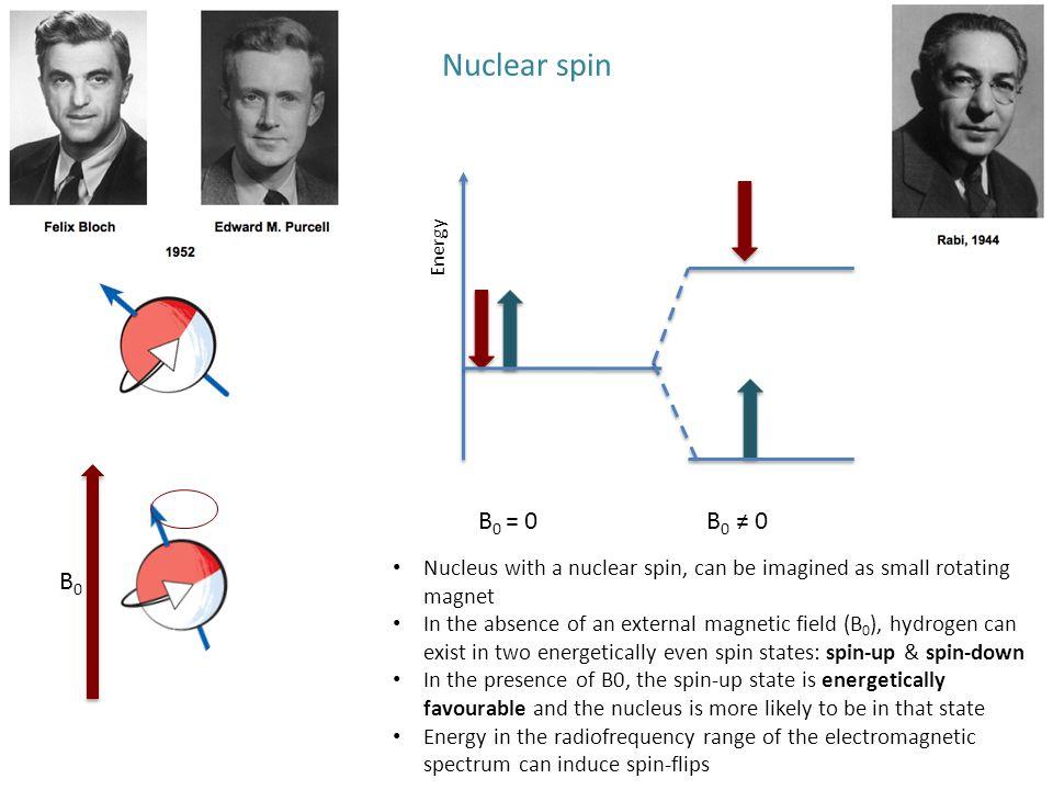 Nuclear spin Energy. B0 = 0. B0 ≠ 0. B0.