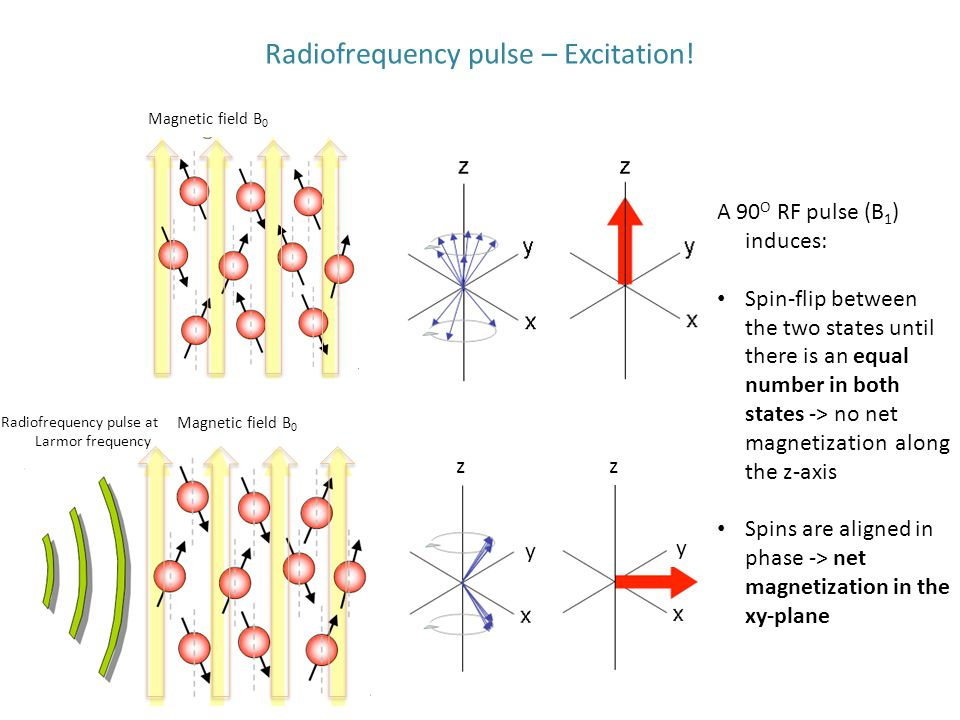 Radiofrequency pulse – Excitation!