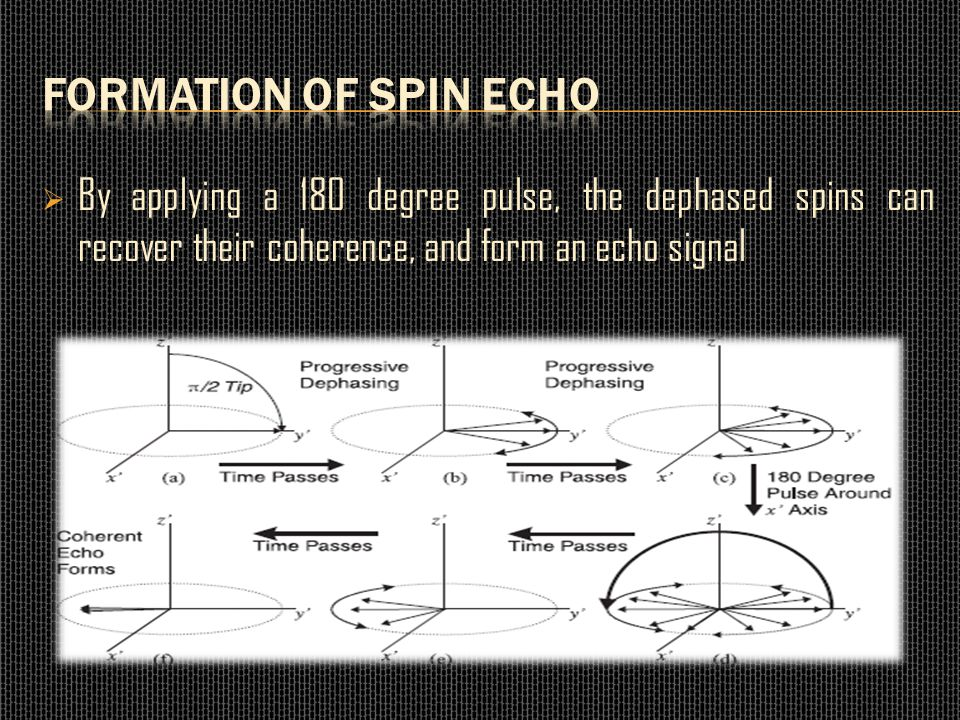 Formation of Spin Echo By applying a 180 degree pulse, the dephased spins can recover their coherence, and form an echo signal.