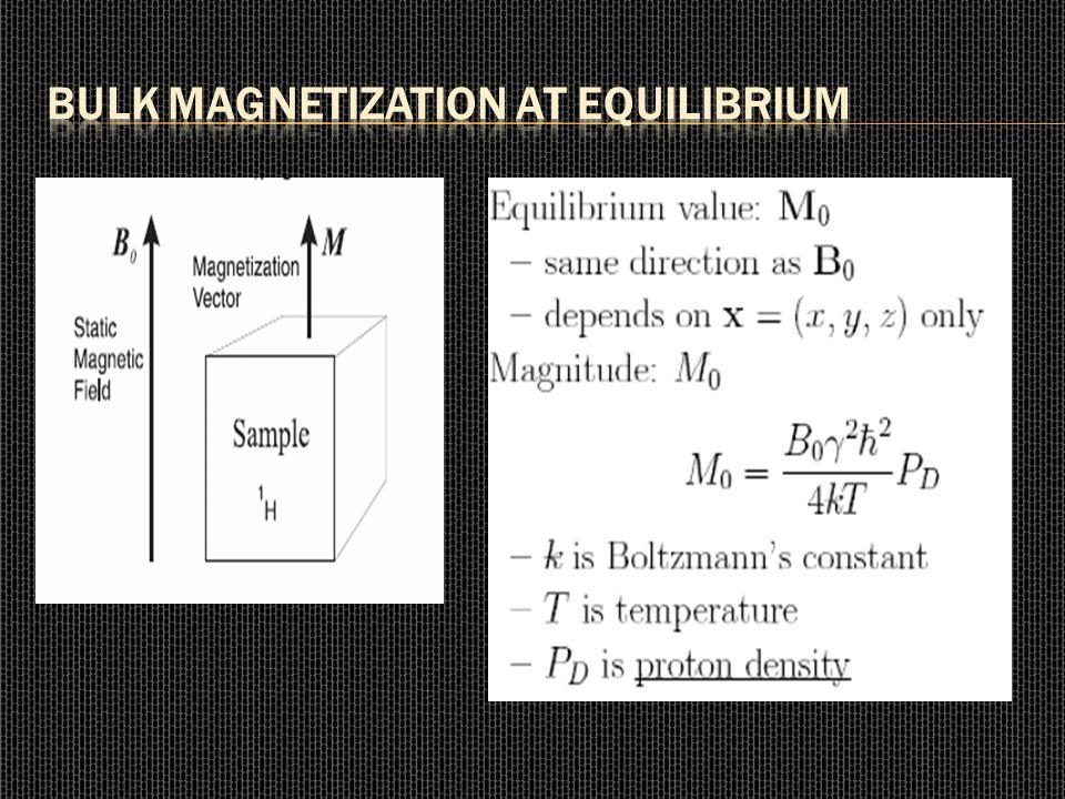 Bulk Magnetization at Equilibrium