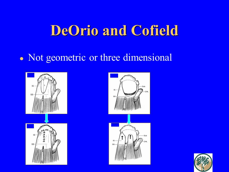 DeOrio and Cofield Not geometric or three dimensional