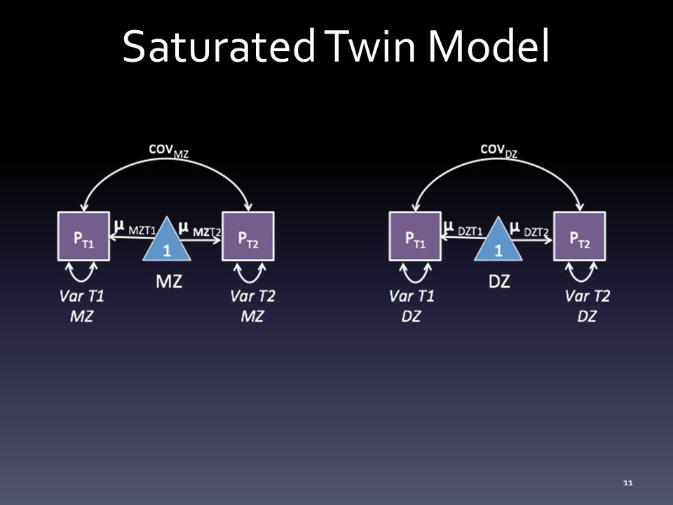 Saturated Twin Model