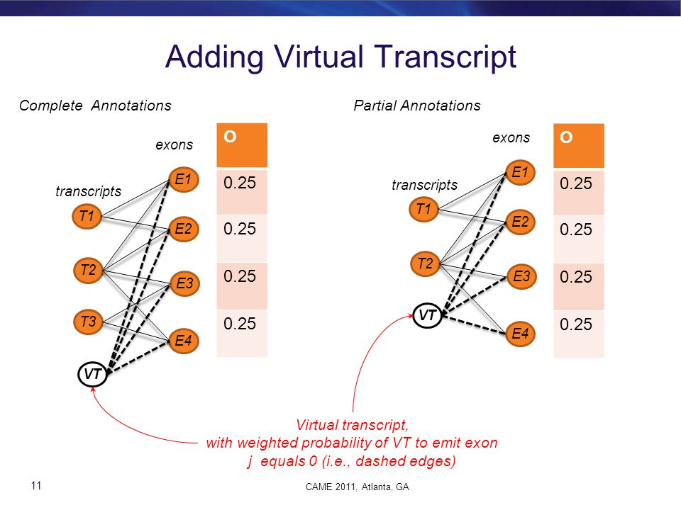 Adding Virtual Transcript