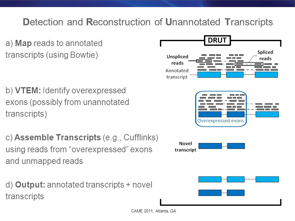 Detection and Reconstruction of Unannotated Transcripts
